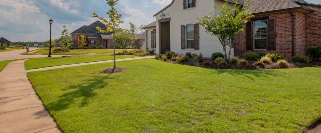 save money in home lawn scaping