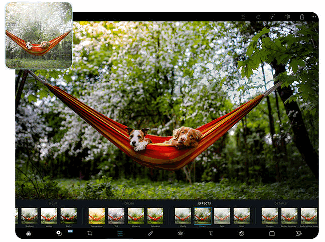 how to use Adobe Photoshop Express in Windows