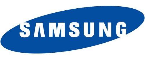 Samsung Net Worth