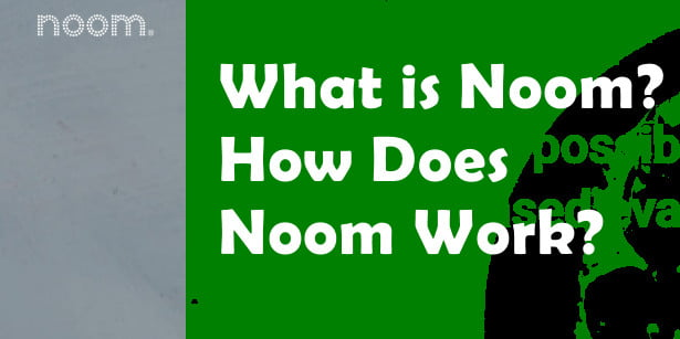 what is noom