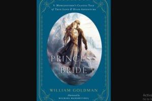 William Goldman Novel